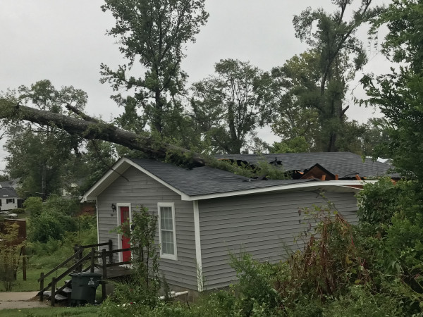 A tree fell on top of this house in the 500 block of Homer Street during Hurricane Laura's strike on Ruston.