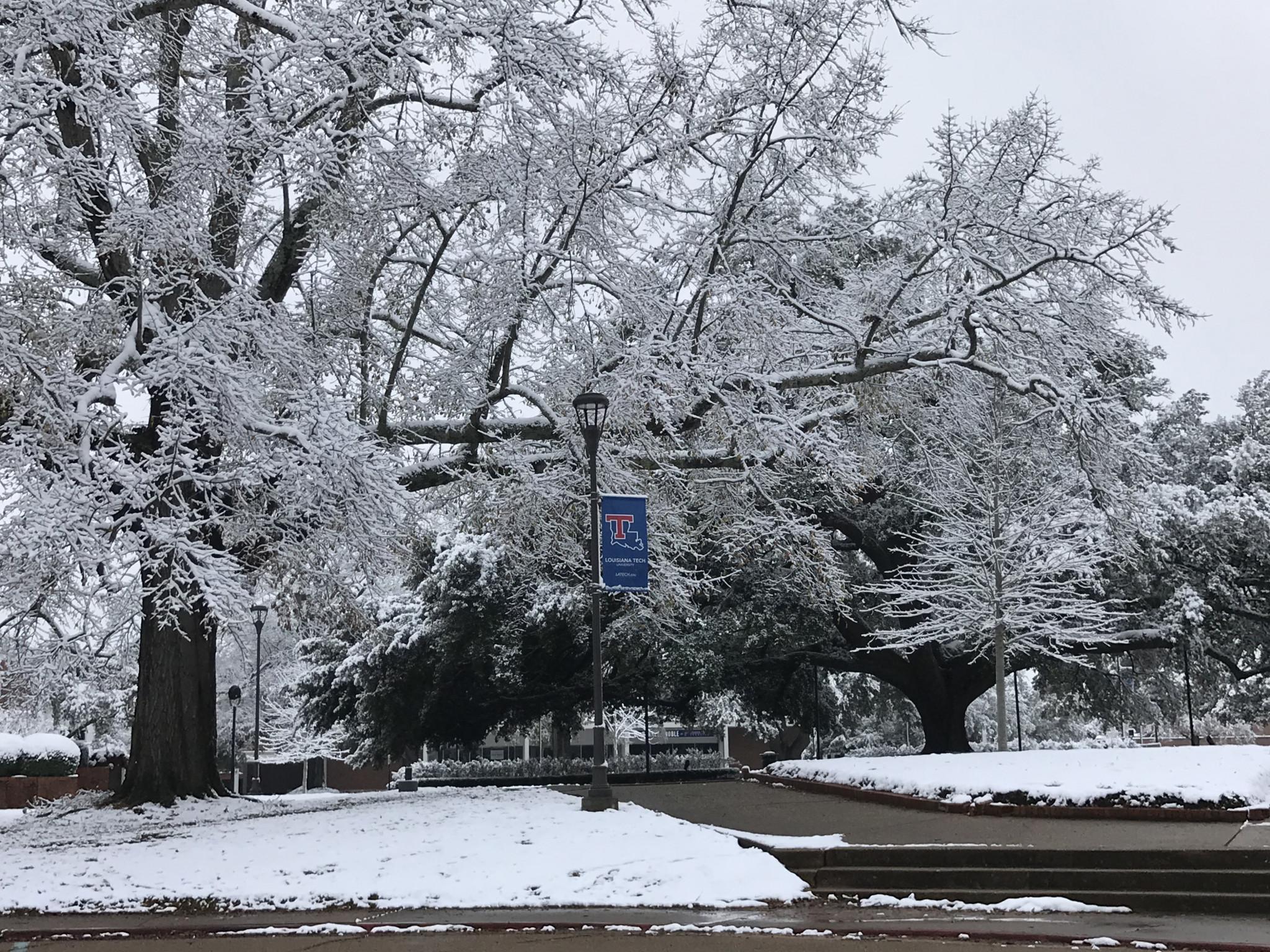 Scenes from the Quad area of Louisiana Tech campus - Leader photo by Caleb Daniel